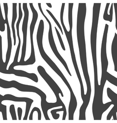 Seamless background with Zebra skin vector image