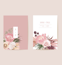 Wedding dried protea orchid pampas grass floral vector