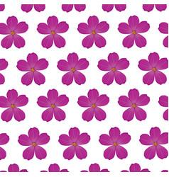 Plumeria flower purple wallpaper decoration vector