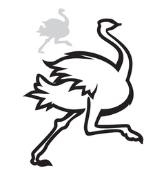 simple image ostrich vector image vector image