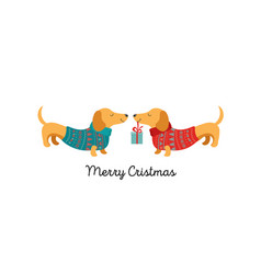 collection of christmas dogs merry christmas vector image