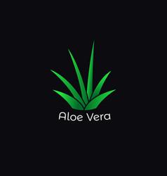 Green aloe vera plant icon vector