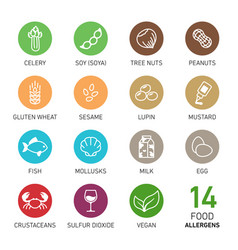 Set of food allergens vector