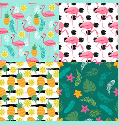 tropical seamless pattern collection with exotic vector image