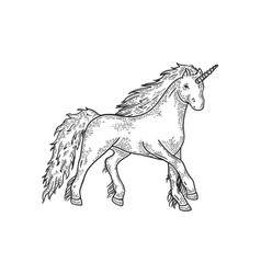 unicorn mythical animal sketch engraving vector image