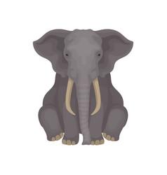 African savanna elephant sitting isolated on white vector