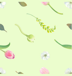 beautiful botanical seamless pattern with tulips vector image