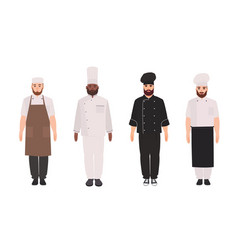 bundle of chefs cooks professional restaurant vector image
