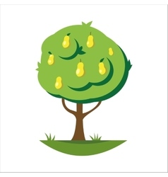 Cartoon pear tree vector