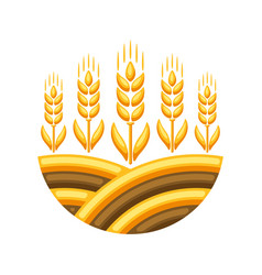 Field with ripe wheat ears vector