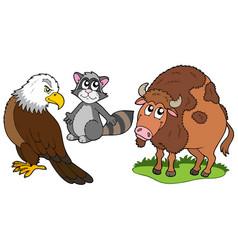 North american animals collection vector