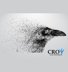 Silhouette of a crow from particles vector