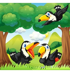 Three black birds at the forest vector image