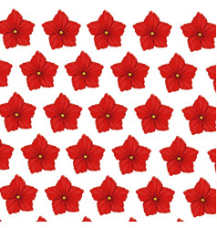 flower geranium wallpaper decoration vector image vector image