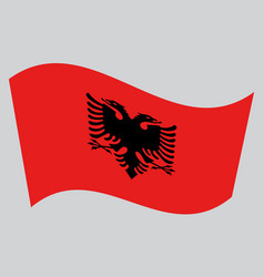 Flag of albania waving on gray background vector