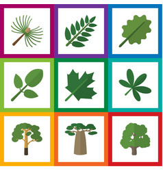 Flat icon bio set of rosemary foliage oaken and vector