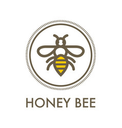 honey bee creative sign concept vector image