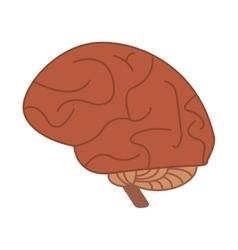 human brain idea creativity vector image
