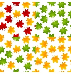 set maple seamless vector image vector image