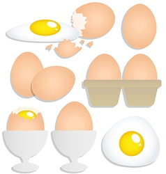Set of eggs on white background vector image