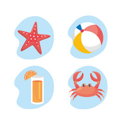 Set starfish with beach ball and juice beverage vector