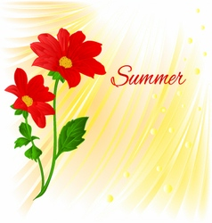 Summer Red Dahlia summer flower stem vector