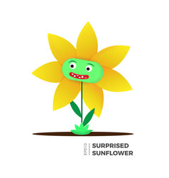 sunflower flat vector image