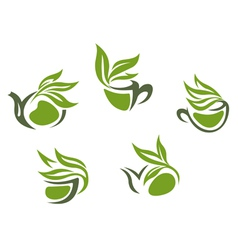 Symbols green herbal tea vector