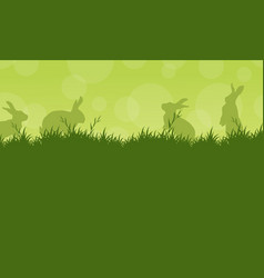 bunny easter on green backgrounds vector image vector image