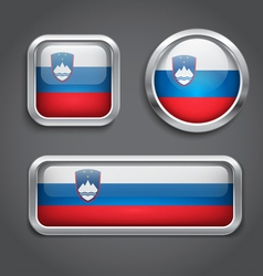 Slovenia flag glass buttons vector image vector image