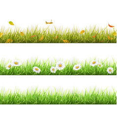 grass in different seasons set vector image vector image