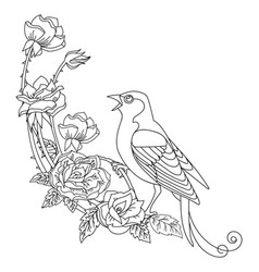 Contour song bird with flowers composition vector
