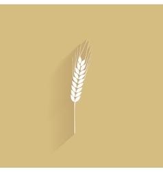 Delicious wheat icon vector image