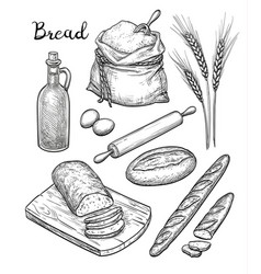 Ingredients and bread set vector