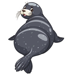 Seal with black skin turning back vector