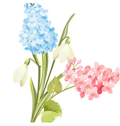 Spring time concept of card with blooming flowers vector