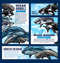 Whale and shark ocean animal banners vector