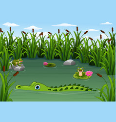Cartoon alligator and frogs in pond vector