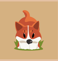 Cartoon red-haired welsh corgi dog in playful pose vector