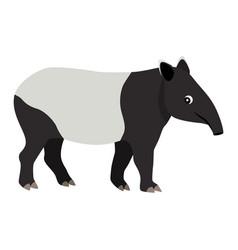 Cute friendly wild animal black and white tapir vector