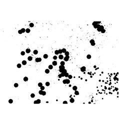 Ink grunge drops texture black hand drawn vector