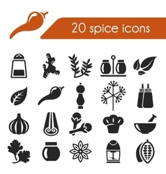 spice icons vector image