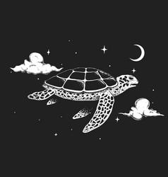 turtle flies in night sky vector image