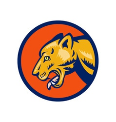 puma or mountain lion vector image vector image