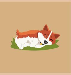 funny little corgi sleeping on green lawn cartoon vector image vector image