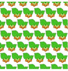 hazel leaf and nuts pattern vector image