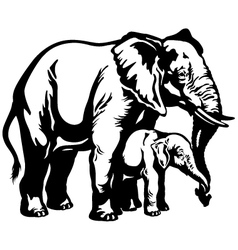 elephant with baby black white vector image