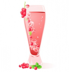 fruit drink vector image