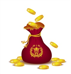 Royal bag with gold coins vector image