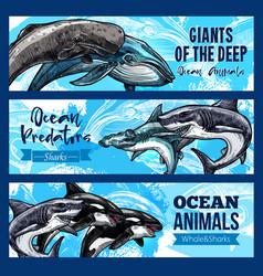 big giant animals of deep ocaen banners set vector image